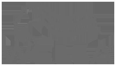 Wella400